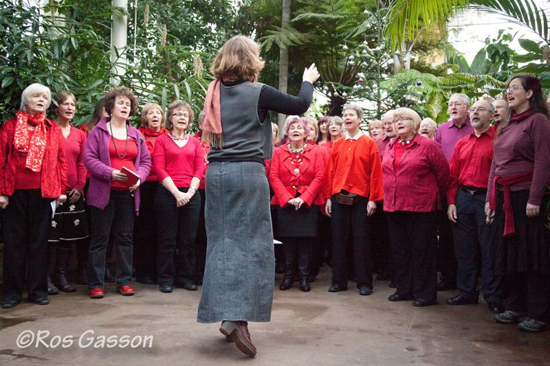 Join Sangstream, Edinburgh's folk choir